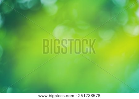 Fresh Natural Green Bokeh Effect Background