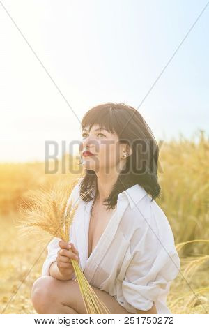 Ripe Ears Wheat In Woman Hands Against A Background Of Wheat Field At The Time Of The Sunset