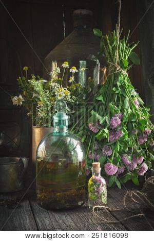 Clover Tincture Or Infusion, Essential Oil Bottle And Medicinal Herbs Bunches Inside The Retro Villa