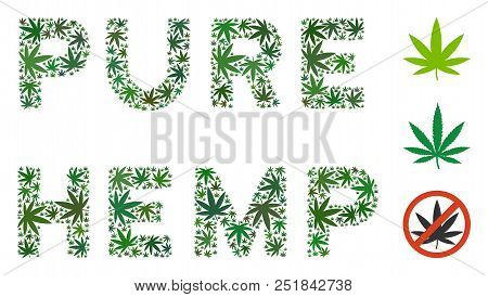 Pure Hemp Label Mosaic Of Weed Leaves In Various Sizes And Green Tinges. Vector Flat Hemp Leaves Are