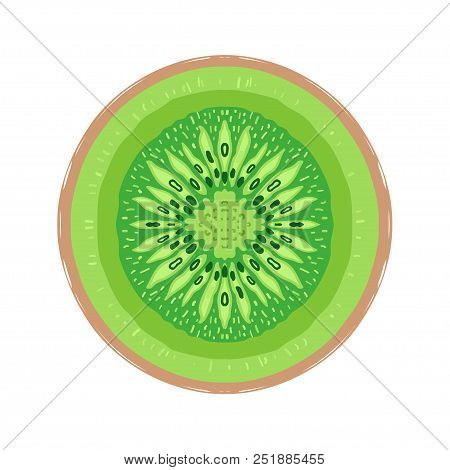 Sliced Colored Sketch Style Kiwi Fruit Isolated On White Background. Half Of Fruit. Bio Food Vector