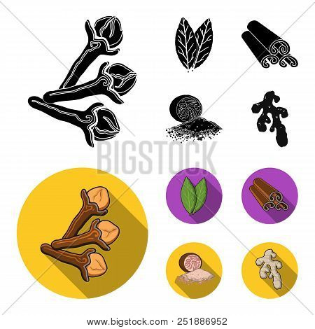 Clove, Bay Leaf, Nutmeg, Cinnamon.herbs And Spices Set Collection Icons In Black, Flat Style Vector