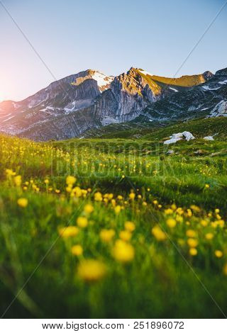 Idyllic summer day in the Durmitor National park. Location place Sedlo pass, village Zabljak, Montenegro, Balkans, Europe. Scenic image of popular travel destination. Discover the beauty of earth.