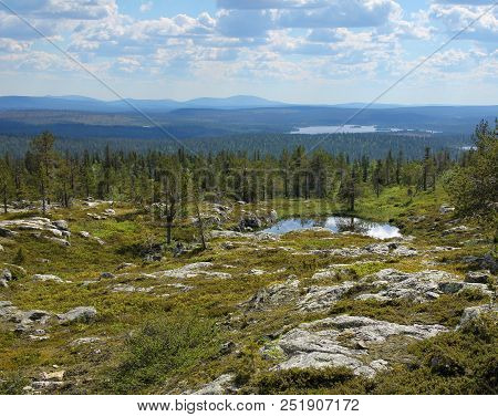 Finnish Lapland Summer Scenery From Fell Särkitunturi With Fell Yllästunturi On The Horizon