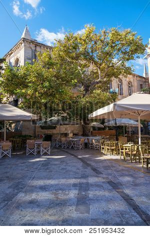 Outdoor Cafe Under A Tree In Sunny Day