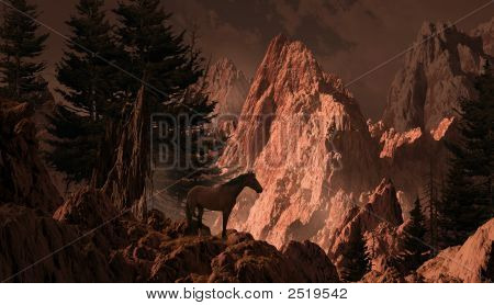 Wild Horse In The Rocky Mountains
