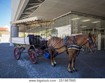 Traditional Horse And Carriage Near Museu Dos Coches In Lisbon