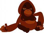 vector ape monkey orang-utan design: zoo series poster