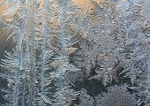 Ice crystals on a window (winter background). poster