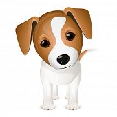 Little jack russel poster