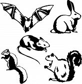 Five stylized vector illustrations of small mammals and rodents poster