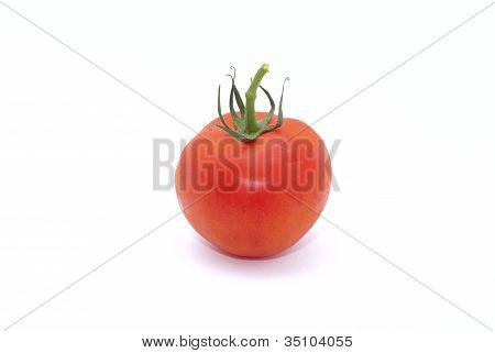 Red Tomatoe