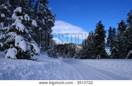 Winter Rural Roads 4
