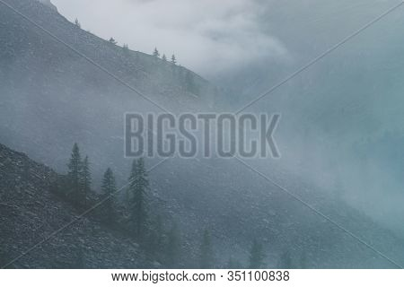 Dramatic Bleak Dense Fog Among Big Rocky Mountainside With Coniferous Trees. Ghostly Atmospheric Vie