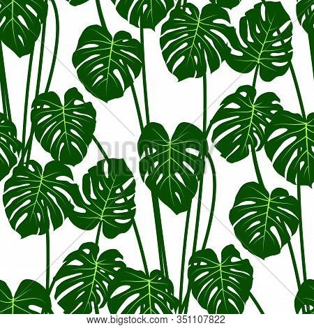 Jungle Tropical Pattern With Monstera Leaves Bohemian Decor, Seamless Textile Print Background. Flor