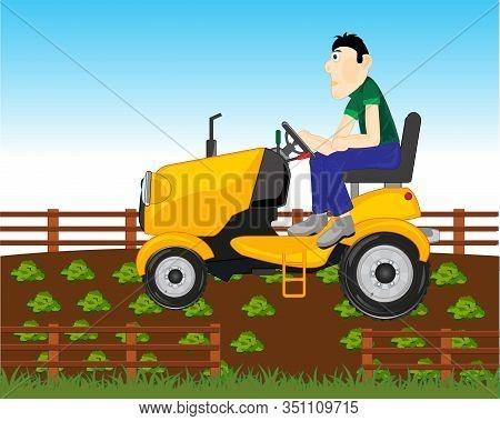 Man Farmer On Garden Tractor In Vegetable Garden