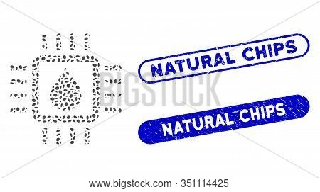 Mosaic Drop Test Chip And Corroded Stamp Seals With Natural Chips Phrase. Mosaic Vector Drop Test Ch