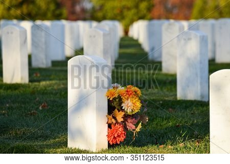 Gravestones and flowers - Arlington National Cemetery, Circa Washington DC