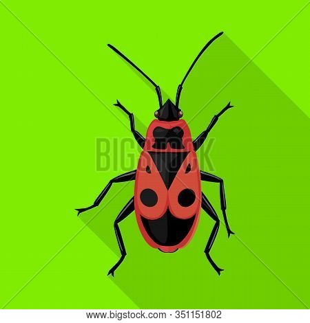 Insect Firefly Vector Icon.flat Vector Icon Isolated On White Background Insect Firefly .
