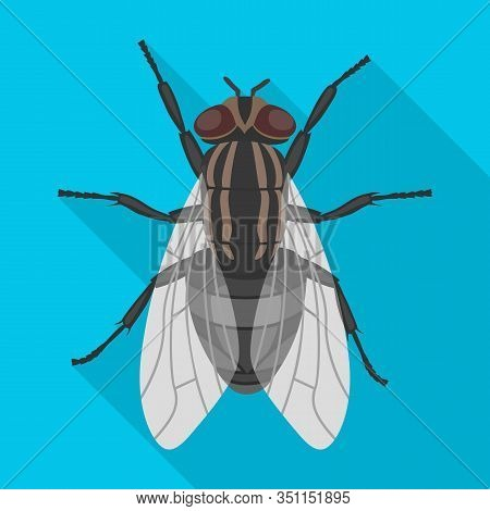 Insect Fly Vector Icon.flat Vector Icon Isolated On White Background Insect Fly.