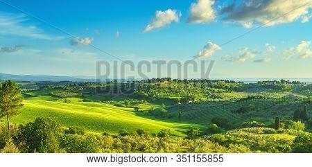 Maremma Countryside, Sunset Landscape. Green Fields In Bibbona And Casale Marittimo. Tuscany, Italy,