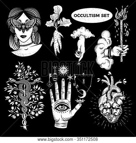 Occultism Set With Woman With Moth Eyes, Mandrake Root, Snakes On The Tree, Alchemical Symbols On Th