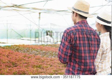 Back Side Of Couple Of Small Business Entrepreneur Man And Woman Checking And Working At Greenhouse