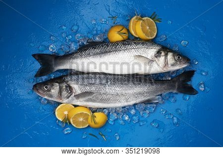 Seabass Fish On Ice On Blue Background, Top View