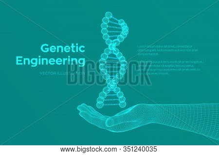 Dna Sequence In Hand. Wireframe Dna Molecules Structure Mesh. Dna Code Editable Template. Science An
