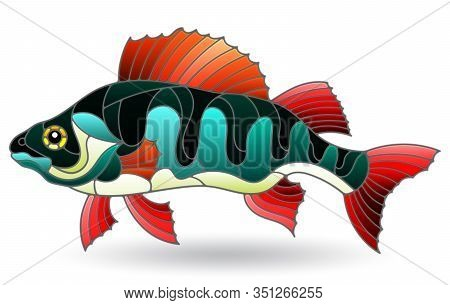Illustration In Stained Glass Style With River Bass, Isolated On A White Background