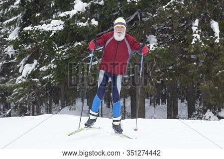 Portrait Of An Elderly Man Who Is Engaged In Cross-country Skiing In The Woods. Active Longevity.