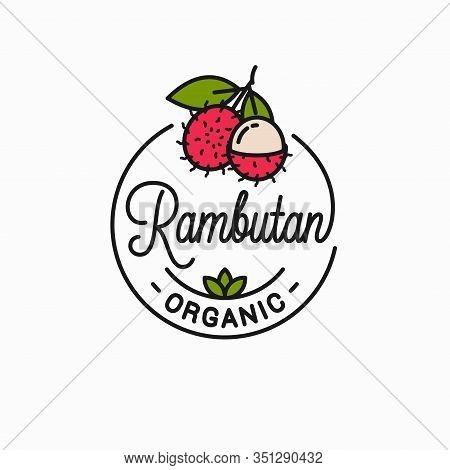 Rambutan Fruit Logo. Linear Of Rambutan Slice