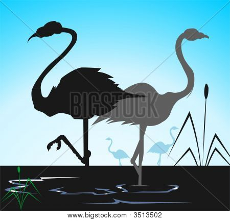 Illustration of two cranes in water in blue background poster