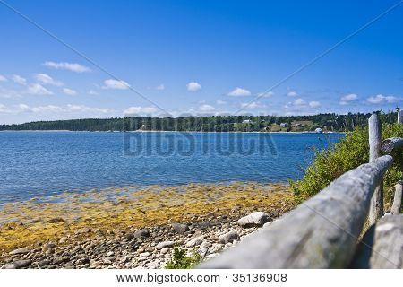 Lakeside View