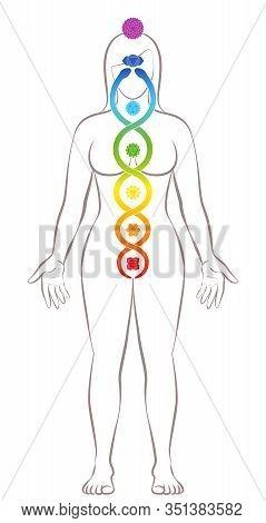 Kundalini Yoga. Meditating Standing Woman With Chakras And Kundalini Serpent, Symbolic For Spiritual