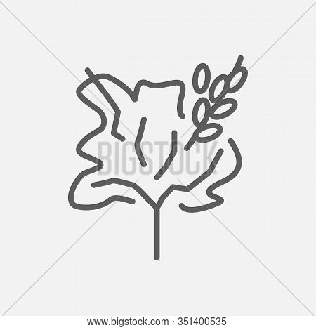 Blackthorn Tree Icon Line Symbol. Isolated Illustration Of Icon Sign Concept For Your Web Site Mobil