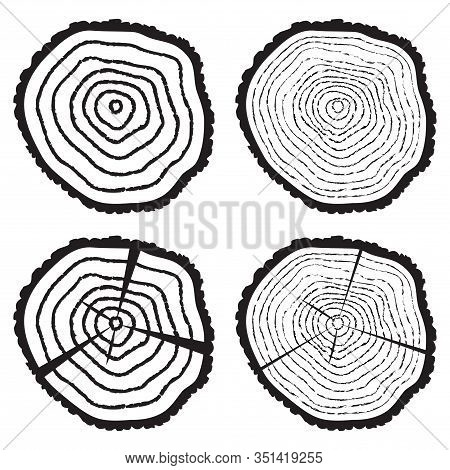 Vector Collection Of Black And White Wooden Cut Of A Tree Log With Concentric Rings And Bark