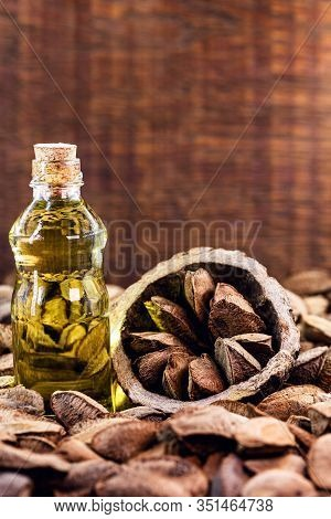 Brazil Nut Oil, Brazilian Nut Oil From The Amazon, Used As A Skin Ingredient, Beauty Product, Super