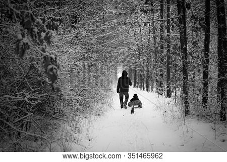 Winter Walk: Dad Sledging With Son. Father Pulling Sled With Son In Snowy Day. Man And Child Enjoy R