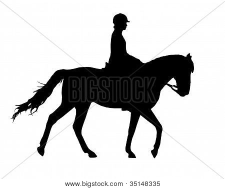 Horse and rider silhouette