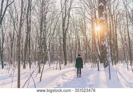 Winter snow walk woman walking away in snowy forest on woods trail outdoor lifestyle active people. Outside leisure. Lost wanderlust girl hiking in nature.