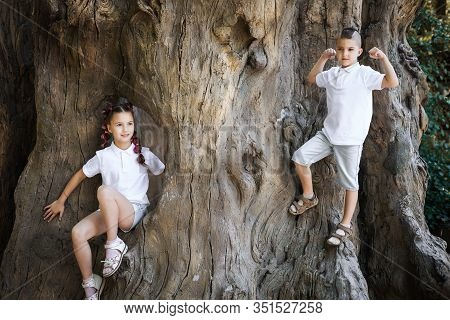 Pretty Lovely Young Girl With Pigtails And Her Brother Wearing White Shirt Climbing The Stem Of The