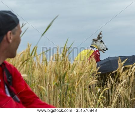 Quievy,france - July 07, 2015: A Persons In A Stag Disguise Is Hiding In The Cereal Field During The