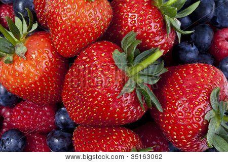 Früchte-Beeren-Mischung