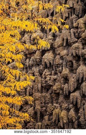 Stalagmite In Autumn Park In Prague Chezh