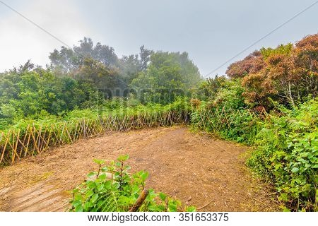 The Top Of Doi Inthanon Mountain In Thailand National Park And Rainforest. Weather After Rain, Small