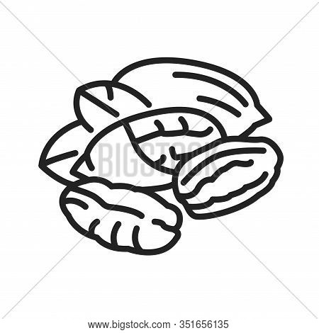 Pecan Nut Black Line Icon. Nuts In The Shell And With Leaves. Pictogram For Web Page, Mobile App, Pr