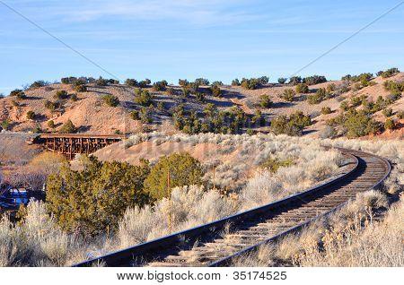 Tracks in the Desert