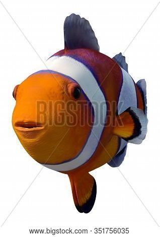 3D Rendering Orange Clownfish On White