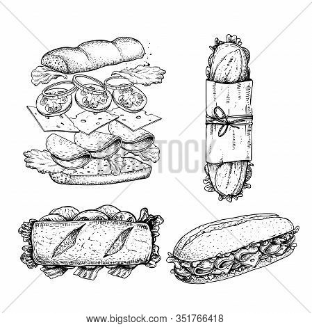 Hand Drawn Sketch Sandwiches Set. Submarine Type Sandwiches With Lettuce Leaves, Salami, Cheese, Bac